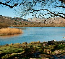 Elterwater Views by John Hare
