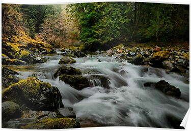 The Flow by Charles & Patricia   Harkins ~ Picture Oregon