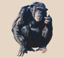 Chimpanzee by Vac1