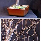SMALL BONSAI ELM - Wire Tree Sculpture by Sal Villano