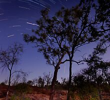 Night Sky, Western Queensland by Ian Beattie
