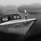 The Fog, the Boat, and the Sea Gull by JimBremer