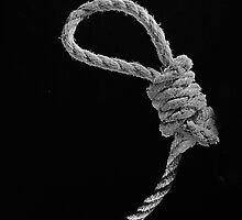 """Knot The 9 O'clock Noose"" by Paul Pasco"