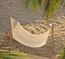 Inviting Hammock - Amaca Invita by PtoVallartaMex