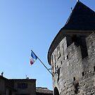 Carcassonne by garigots
