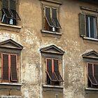 The Windows by Rae Tucker