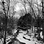 Winter Brook by Radharc21
