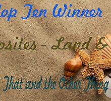Banner for Top Ten Winner - Opposites  Land & Sea by quiltmaker