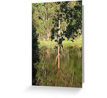Reflections on a bush dam Topi Topi NSW Australia Greeting Card