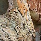 Erosion by Julia Washburn