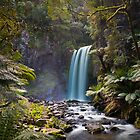 Hopetown Falls in the Otway National Park II by Chris  Randall