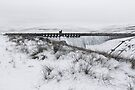 Angram Dam & Reservoir in Winter by Andrew Bret Wallis