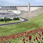 Eufaula (Oklahoma) Dam With Red Clover by Carolyn  Fletcher
