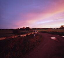 Eight Acre Drove, Somerset Level by tubb
