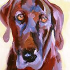 Chocolate Lab by Miles Histand