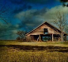 Hwy. 82 Barn by Barbara Simmons