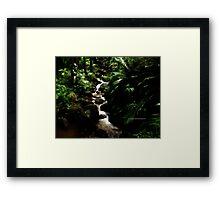 hawaiian botanical gardens V Framed Print