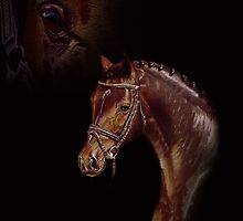 Horse - colored Pencil by My-world-2