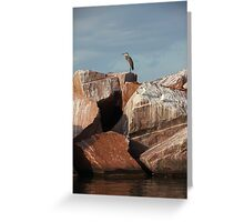 Great Blue Heron on Red Rock Greeting Card