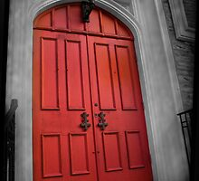 #2 I see a red door........  by Tamara  Kaylor