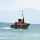 MV Sygna - Shipwreck - Stockton Beach by Joe Hupp