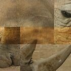 Rhino Collage by RobsVisions