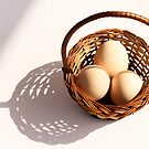 Egg Basket by Anaa