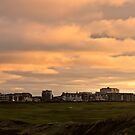 Newquay Cornwall by Brian Roscorla