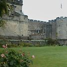 Stirling Castle, Scotland by MagsWilliamson