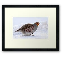 On The Move / Gray Partridge Framed Print