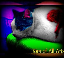 Purr-cadelic by Kim of All Arts  (KoAA)
