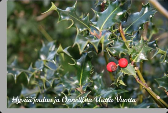 Hyvää joulua - Finnish Christmas Card (Holly) by JoAndCoCards