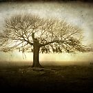 Tree of Life by KatarinaSilva