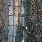 Secret Ivy door by katpartridge