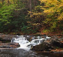 Autumn Cascades by andrewsound95