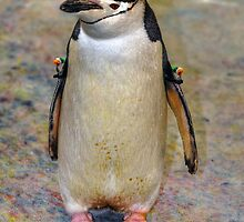 Penguin by venny
