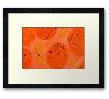 Impression Oranges Framed Print