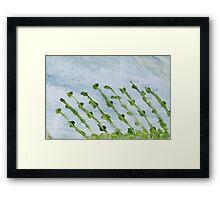 Impression Shore Seaweeds Framed Print