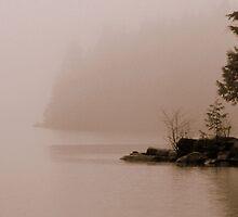 fade away by Jean Poulton