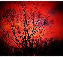 (Red morning)..Too much near the truth they say..Keep it 'till another day..Let them have their little game..Illusion helps to keep them sane   by jammingene