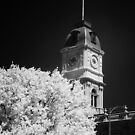 Ballarat Townhall - Infrared by Hans Kawitzki