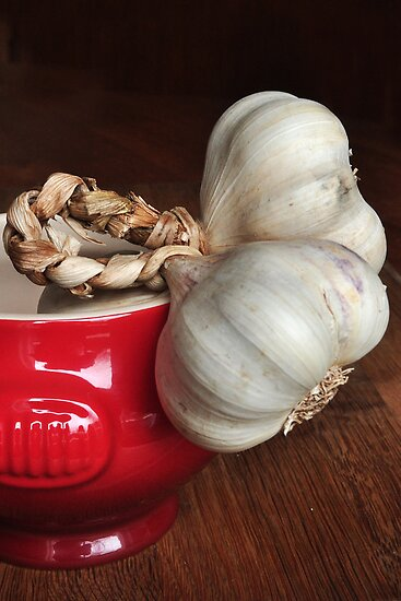 Garlic by Heather Thorsen