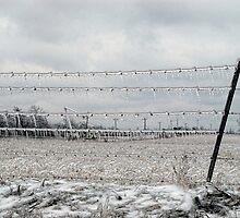 Icy Fenceline by Carolyn  Fletcher