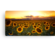 Evenings Of Augusts Past Canvas Print