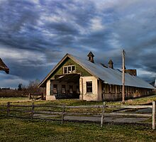 Loafing Shed  by Mike  Kinney