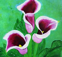 Calla lilies by maggie326