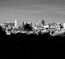 San Francisco skyline from Dolores Park part one by Confundo