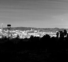 San Francisco from Dolores park panorama by Confundo
