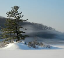 Little Long Pond In Winter by JHRphotoART