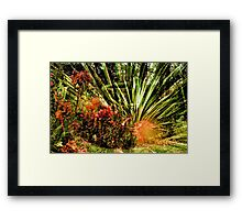 Mixed Photograhy Framed Print